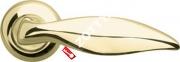 Ручка дверная раздельная Armadillo Taurus LD65-1GP/SG-5