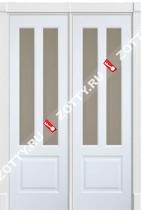 Дверь двустворчатая ДО Премиум 2